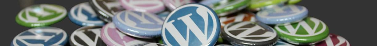 Super-Girl-Creations-WordPress